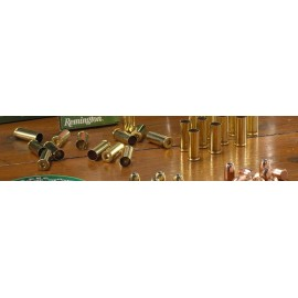 Remington .38 Special 100 stuks